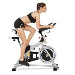 Aceshin Home Gym Upright Exercise Fitness Bike Review